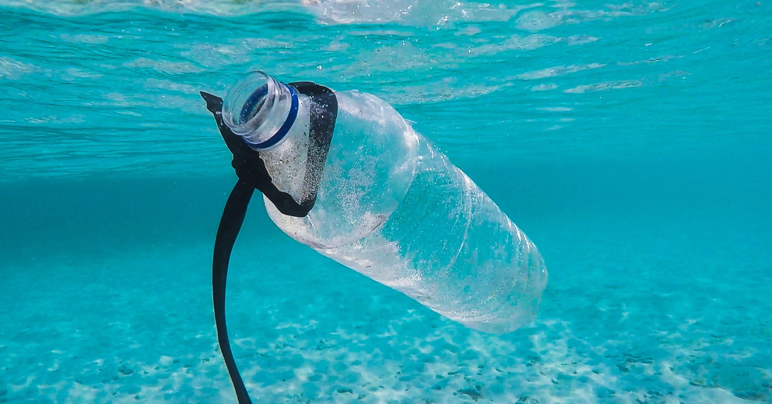 The 7 Biggest Advantages of Biodegradable Plastics and How You Can Use Them
